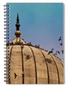Pigeons Around Dome Of The Jama Masjid In Delhi In India Spiral Notebook