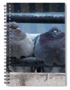 Pigeons Perching Spiral Notebook