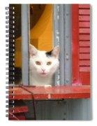 Pika Boo Spiral Notebook