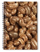 Pill Bugs Spiral Notebook