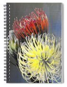 Pincushion Spiral Notebook