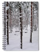 Pine Forest In January Spiral Notebook
