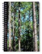Pine Patch Spiral Notebook