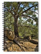 Pine Tree And Rocks Spiral Notebook