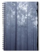 Pine Trees In Cloud In The Forest Corona Spiral Notebook