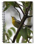 Northern Parula Spiral Notebook