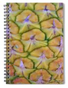 Pineapple Eyes Spiral Notebook