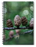 Pinecone Party Line Spiral Notebook