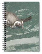 Pinguis Spiral Notebook