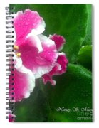 Pink African Violets And Leaves Spiral Notebook