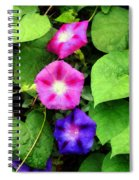 Pink And Purple Morning Glories Spiral Notebook