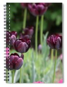 Pink And Purple Tulips Spiral Notebook