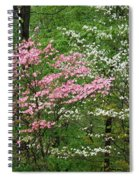 Pink And White Spiral Notebook