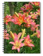 Pink And Yellow Daylilies Spiral Notebook