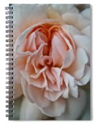 Pink Angel Spiral Notebook