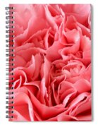 Pink Carnation Spiral Notebook