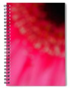 Pink Center Spiral Notebook