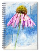 Pink Coneflower On Blue Spiral Notebook