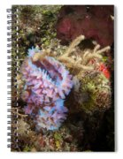Pink Corner Vase Spiral Notebook