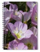 Pink Evening Primrose Wildflowers Spiral Notebook