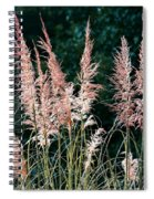 Pink Feathery Reflectors Spiral Notebook