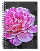 Pink Flame Spiral Notebook