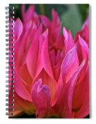 Pink Flames Spiral Notebook