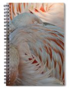 Pink Flamingo 7 Spiral Notebook