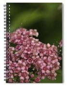 Pink Flower Cluster Spiral Notebook