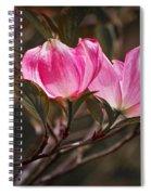 Pink Flower Tree Blossoms No. 247 Spiral Notebook