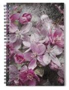 Pink Flowering Crabapple And Grunge Spiral Notebook