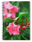 Coastal Flowers Spiral Notebook