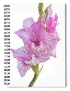 Pink Gladiolus Spiral Notebook