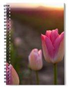Pink Glory Spiral Notebook