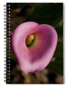 Pink Heart Spiral Notebook