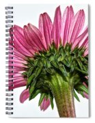 Pink Heaven Spiral Notebook