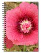 Pink Hollyhock 1 Spiral Notebook