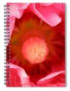 Pink Hollyhock 2 Spiral Notebook