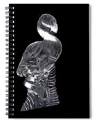 Pink Ice Flamingo Ice Carving Spiral Notebook