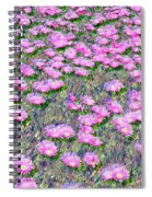Pink Ice Plant Flowers Spiral Notebook