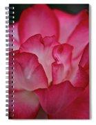 Pink Ice Spiral Notebook