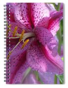 Pink Lily After The Rain Spiral Notebook