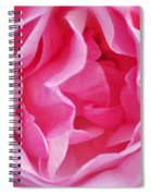 Pink March Rose 2012 Limited Edition Spiral Notebook