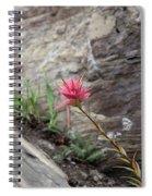 Pink Mountain Flower Spiral Notebook
