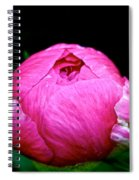 Pink Peony Bud Spiral Notebook