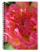 Pink Petal Flames Spiral Notebook