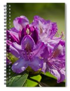 Pink Petals On The Trail Spiral Notebook