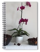Pink Phalaenopsis Orchid And Sour Cherries Spiral Notebook