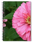 Pink Posy Pano Spiral Notebook