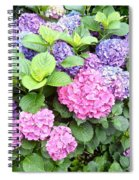 Pink Purple Hydrangeas Spiral Notebook